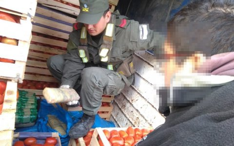 Ocultaba entre frutas y verduras 215 kilos de hojas de coca