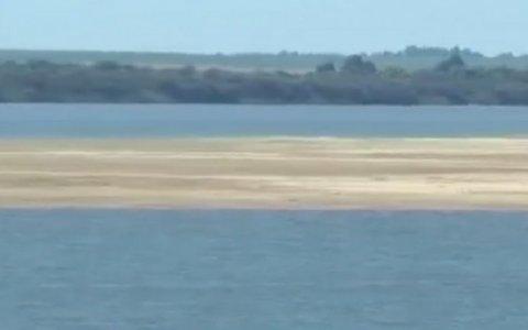 Padre e hijo se ahogaban en una playa entrerriana y los rescató un guardavidas