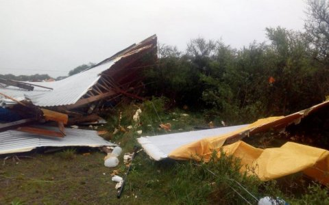 El fuerte temporal arrasó con un galpón de pollos en Entre Ríos